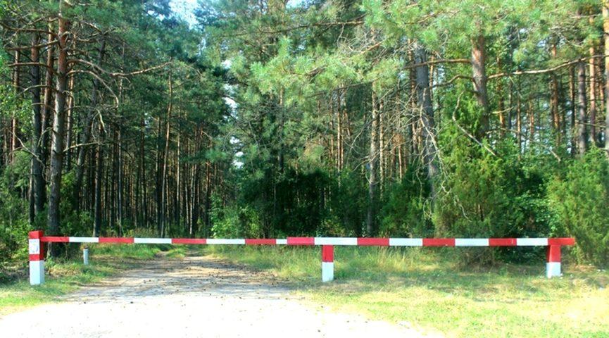 На территории лесного фонда Тверской области введено ограничение пребывания граждан в лесах